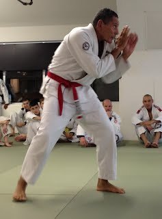 Street Defense with GM Relson Gracie
